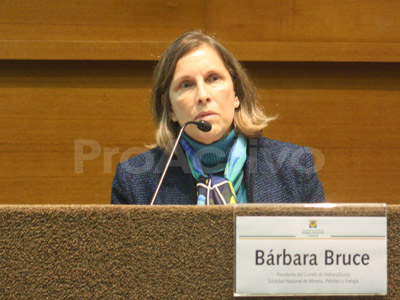 Bárbara Bruce, presidenta del comité sectorial de Hidrocarburos de la Sociedad Nacional de Minería, Petróleo y Energía (SNMPE).