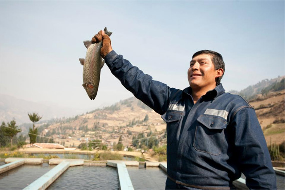 """""""Desarrollo de la Pesquería Continental en la provincia de Huari"""""""