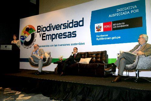 Foto: ANDINA/Juan Carlos Guzmán Negrini.