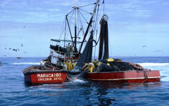 barco pesquero Chile