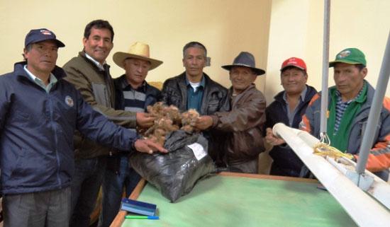 Pobladores de la comunidad campesina de Cátac se capacitan en la crianza de vicuñas en Ayacucho
