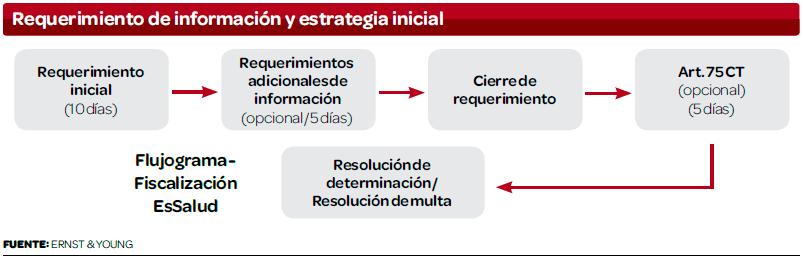 Requerimiento-de-informacion-y-estrategia-inicial