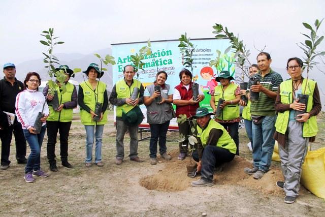 Asociación UNACEM continúa arborizando lomas de Villa María del Triunfo