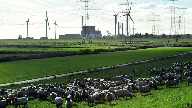Para la clasificación se tiene en cuenta la eficiencia energética, los códigos de construcción y el transporte público.(Foto: AFP)