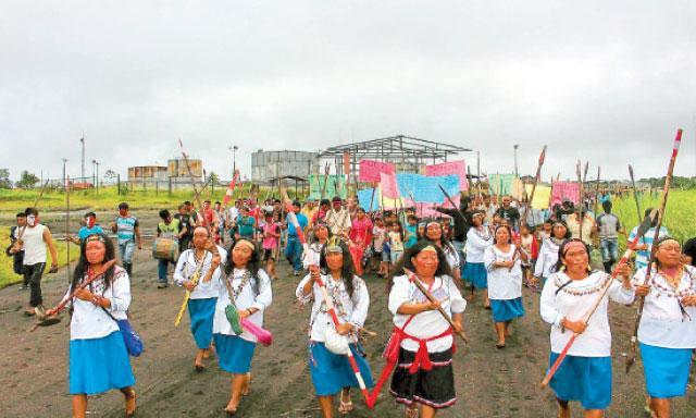 nativos-pluspetrol norte