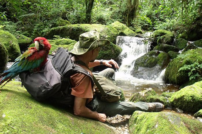 Selva-Perú