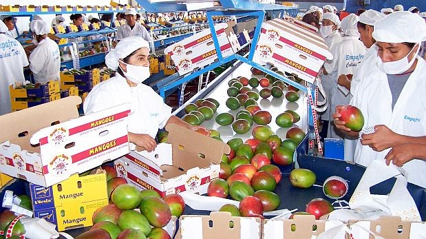 Las exportaciones no tradicionales están cayendo y el MEF no logra mejorar la competitividad. (Foto referencial: Archivo El Comercio)