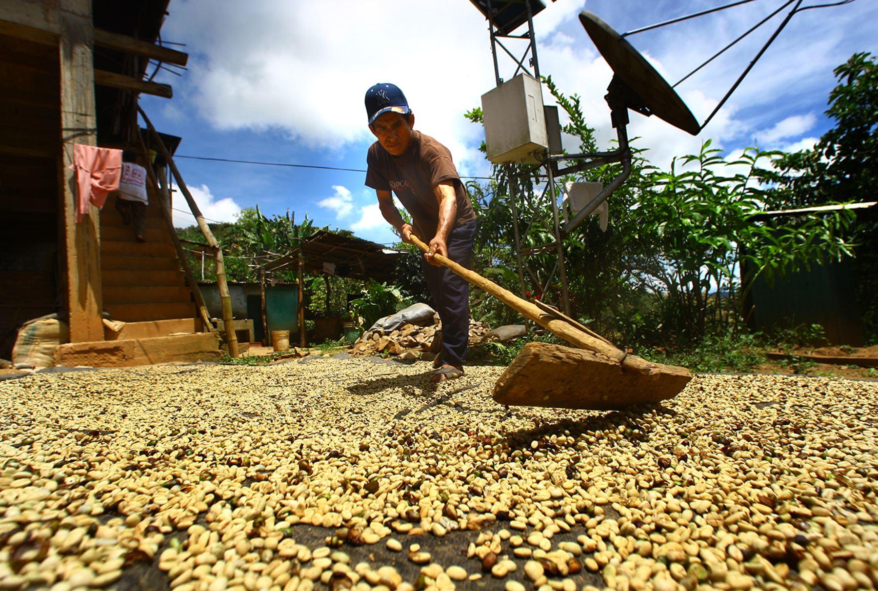 Productores de la selva central-Foto: Andina