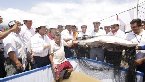 Foto: Inforegión