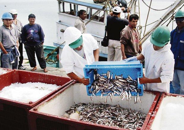 16-1_pescadores_paita_2-Noticia-762054
