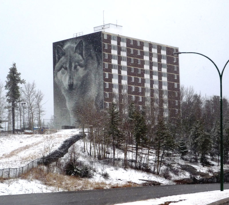 The Wolf Wall (Foto: Internet)