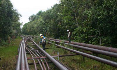 Oleoducto Norperuano / Foto: Andina