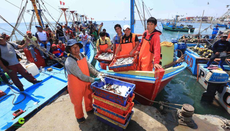 Más de 2,900 pescadores artesanales son beneficiados con el Desembarcadero de San Andrés, reconstruido con el aporte del Consorcio Camisea.