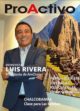 Revista ProActivo N° 195 (Enero 2021)