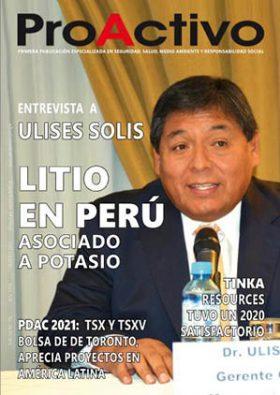 Revista ProActivo N° 196 (Febrero 2021)