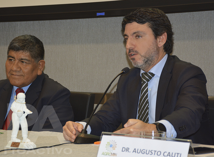 Augusto Cauti, Viceministro de Minas