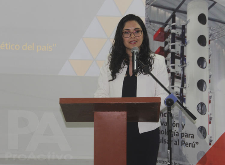 Analí Álvarez, directora del CITEenergía