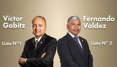 Elecciones-IIMP