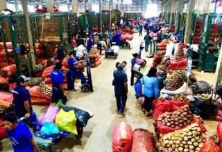 Coronavirus en Perú: Camiones siguen abasteciendo los mercados de Lima y provincias