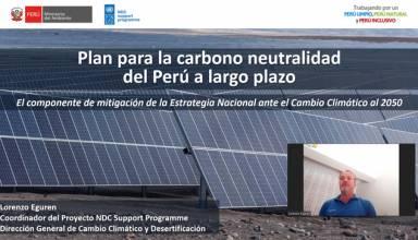 Hacia la Carbono Neutralidad del Perú en el Largo Plazo