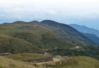 Cañariaco