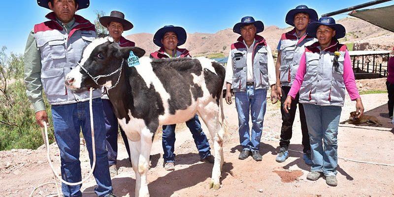 Southern Peru inicia nuevo ciclo de formación de líderes pecuarios