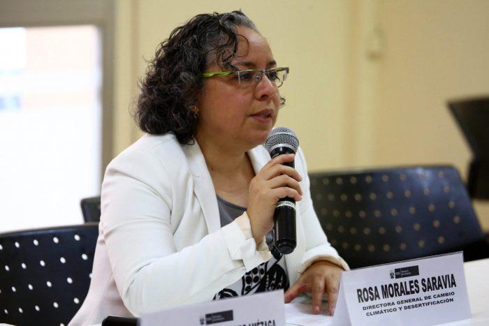 Rosa Morales, directora general de Cambio Climático y Desertificación del Minam