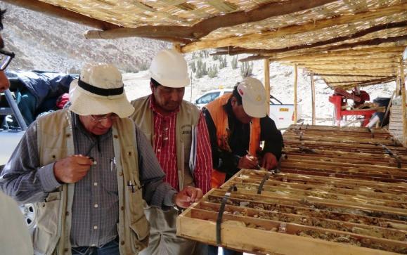 muestras del proyecto cuprífero Lara, en Ayacucho