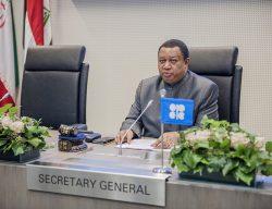 OPEP: cambio a energías renovables hace que suba precio del gas