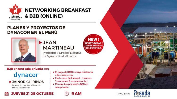 Planes y proyectos de Dynacor en el Perú